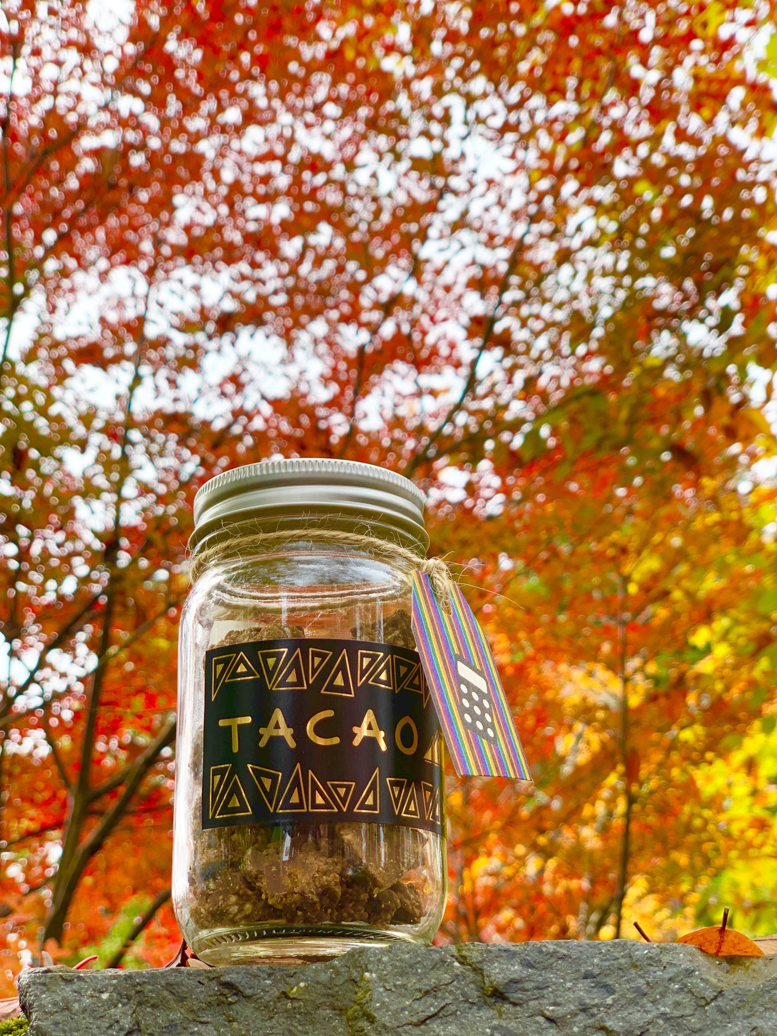 秋TACAOと紅葉