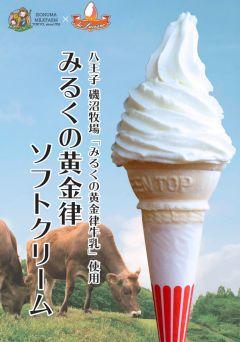 磯沼牧場 ミルクの黄金律ソフトクリーム【権現茶屋】